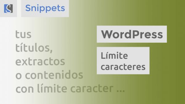 WordPress límite caracteres